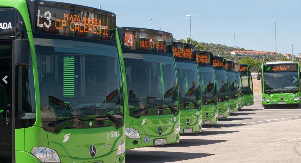Ночной автобус доставит из Аликанте в аэропорт