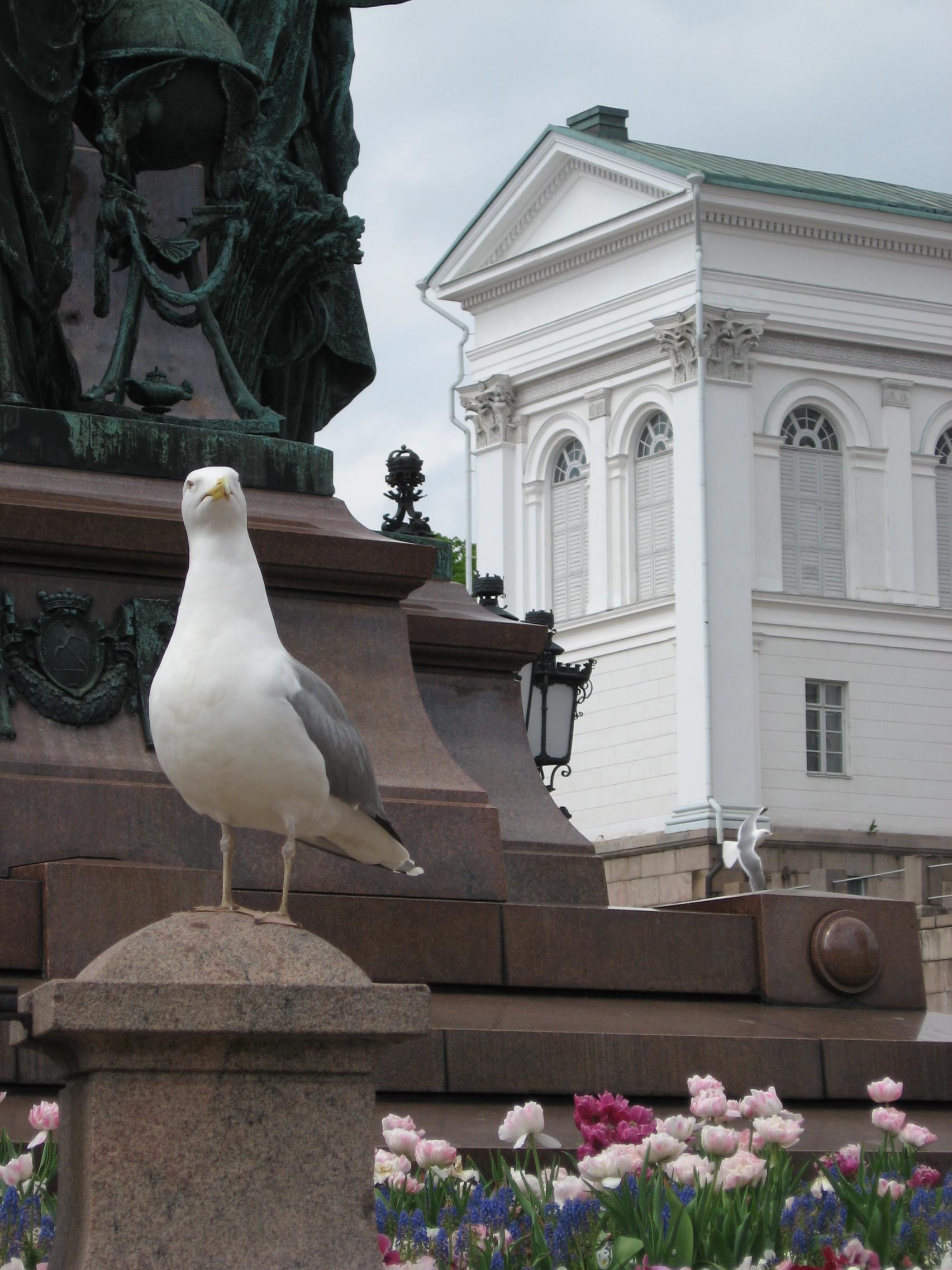 В 2018 году россияне смогут посетить без виз 110 стран
